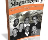 TheMagnificent7